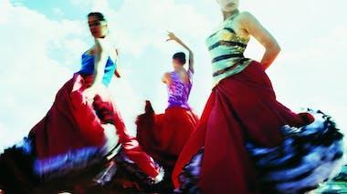 Faites travailler vos jambes avec le flamenco