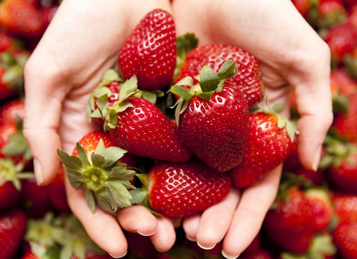 Favoriser le sucre des fruits frais
