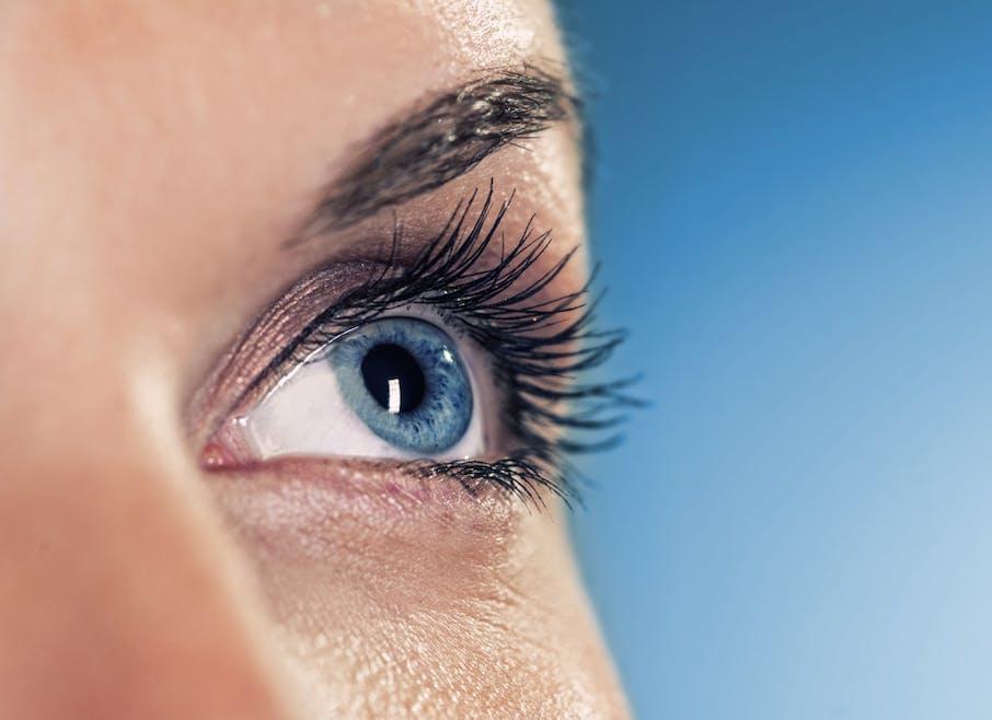 DMLA : succès d'une greffe de cellules souches dans l'œil