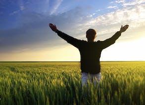 Profitez le matin de la lumière naturelle !