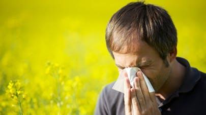 Allergie aux pollens: comment limiter l'exposition?