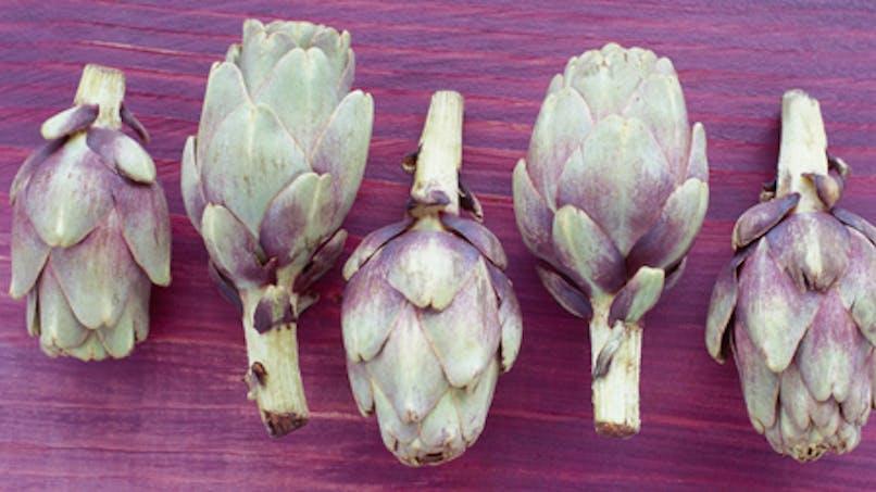 L'artichaut, un légume détox