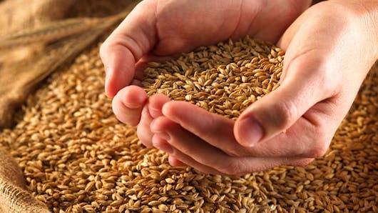 Céréales: comment les choisir?