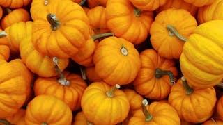 Potiron, raisin, champignons... les bienfaits des aliments d'automne