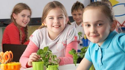 Quel serait le rythme scolaire idéal?