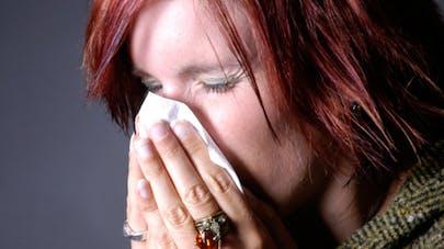 J'éternue, je mouche, je gratte… Suis-je allergique?