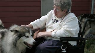 Animal thérapie: des chiens au secours des malades