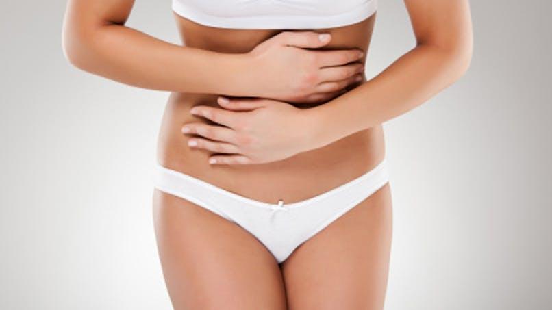 L'intestin, une pièce maîtresse du système immunitaire