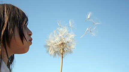 Allergies : pourquoi un tel boom ?