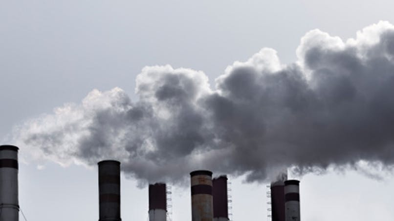 Réchauffement climatique: quelles conséquences sur la santé?
