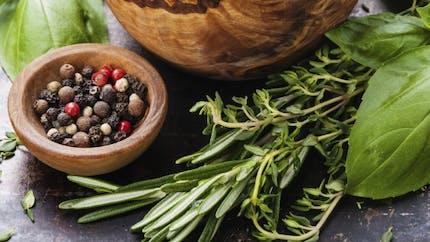 Ajoutez des herbes et des épices à votre régime!