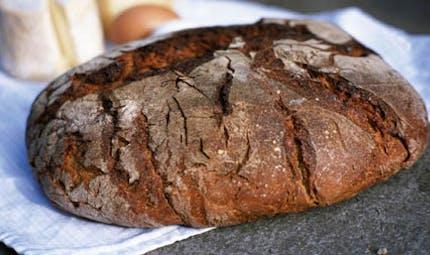 Manger du pain est-il bon pour la santé?