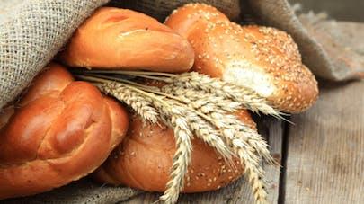Le pain et les céréales bio sont-ils plus sains?