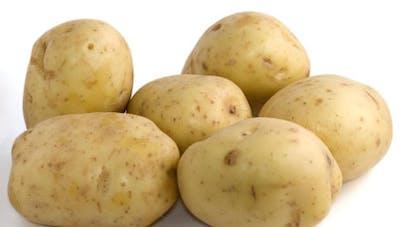 La pomme de terre: votre alliée pour l'hiver