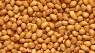 Quelles sont vos connaissances sur le soja?