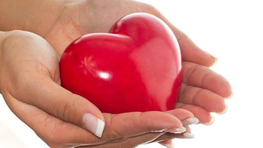 Don d'organes: faites connaître votre décision