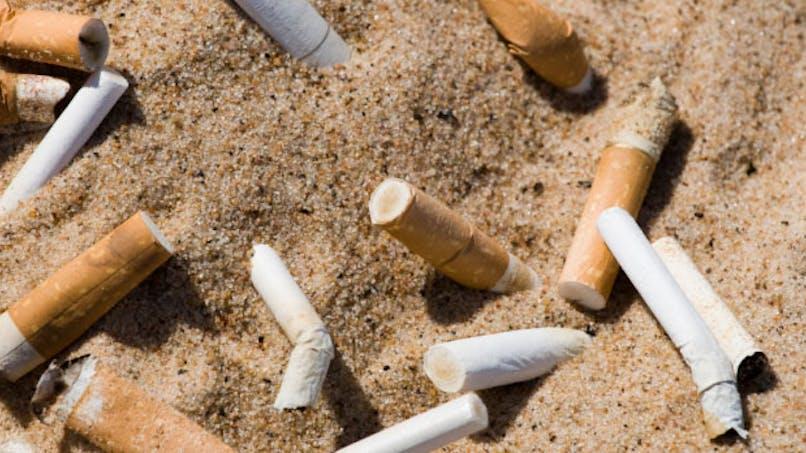 25000 mégots ramassés en une journée sur les plages de Marseille