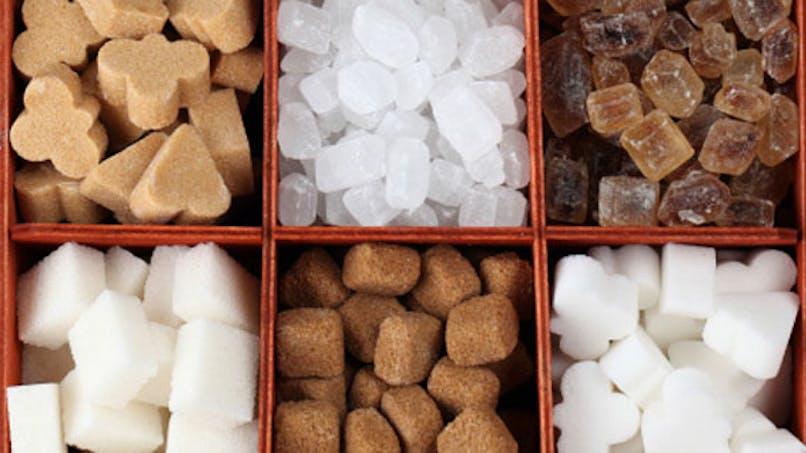 Nutrition: quel sucre choisir?