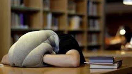 """Un """"oreiller autruche"""" pour des siestes nomades"""