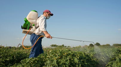 Pour le Sénat: la dangerosité des pesticides est sous-évaluée
