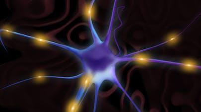 Illuminer le cerveau pour vaincre la  dépression