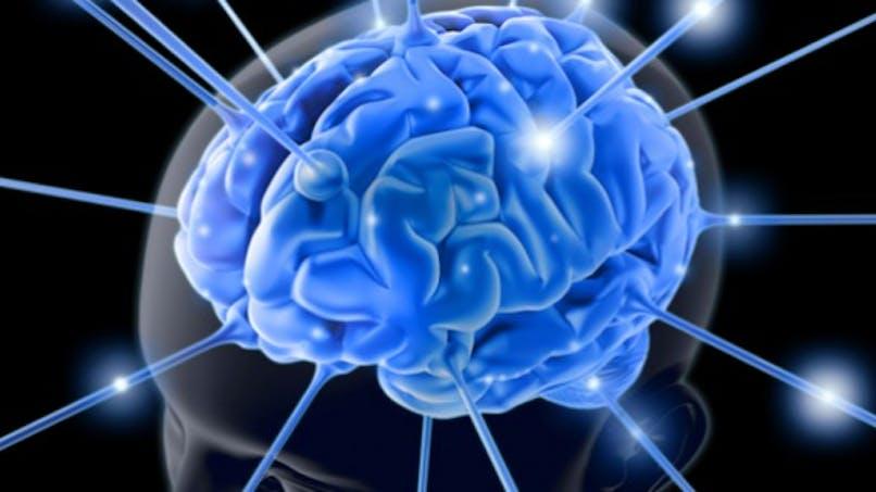 Aujourd'hui, c'est la journée européenne de l'épilepsie
