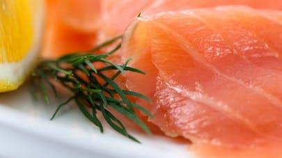 Bientôt du saumon OGM dans nos assiettes
