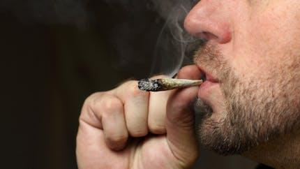 Cannabis: les consommateurs pourraient payer une contravention