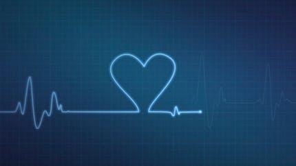 Les différentes maladies cardiovasculaires