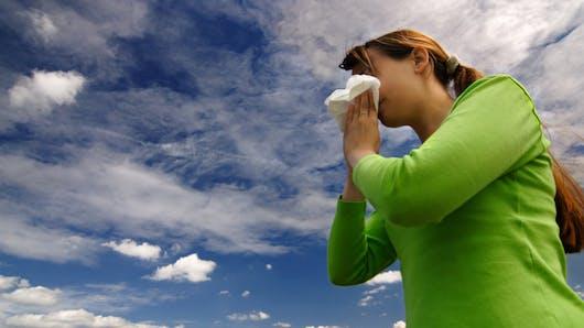 Rhume des foins : faut-il choisir un antihistaminique oral ou local ?