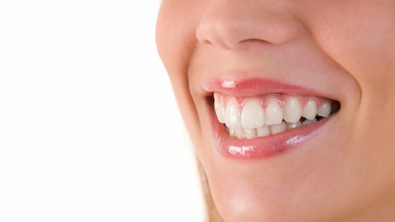 Et si nos dents repoussaient à l'âge adulte?