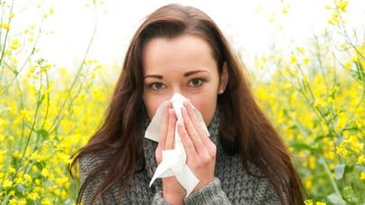 Huit antihistaminiques pour calmer les allergies