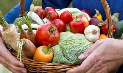 Du 14 au 23 juin: découvrez les fruits et les légumes