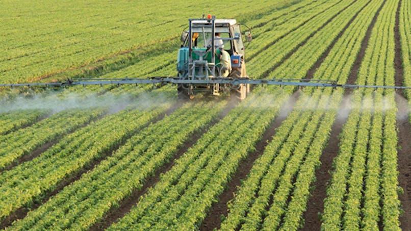 Pesticides: l'Inserm pointe des risques pour la santé