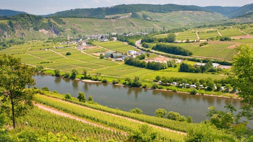 Pesticides: 93% des cours d'eau sont contaminés
