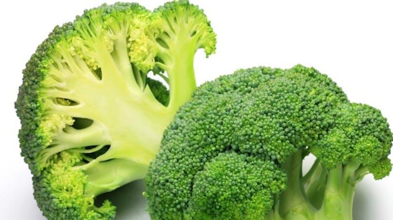 Arthrose et brocolis: et si la solution était dans l'assiette?