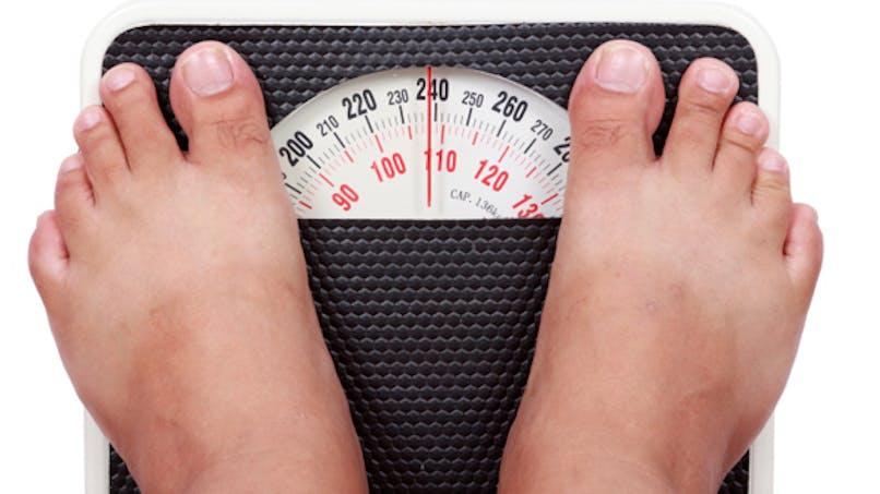 La flore intestinale bientôt au secours de l'obésité