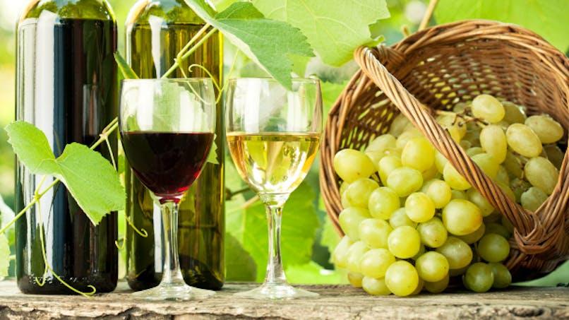 Contre la dépression, buvez un verre de vin par jour