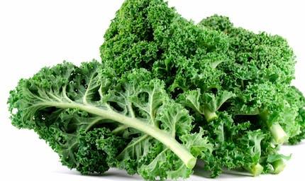 Le kale, un légume bientôt à la mode française