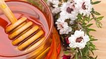 Les bienfaits du miel de manuka