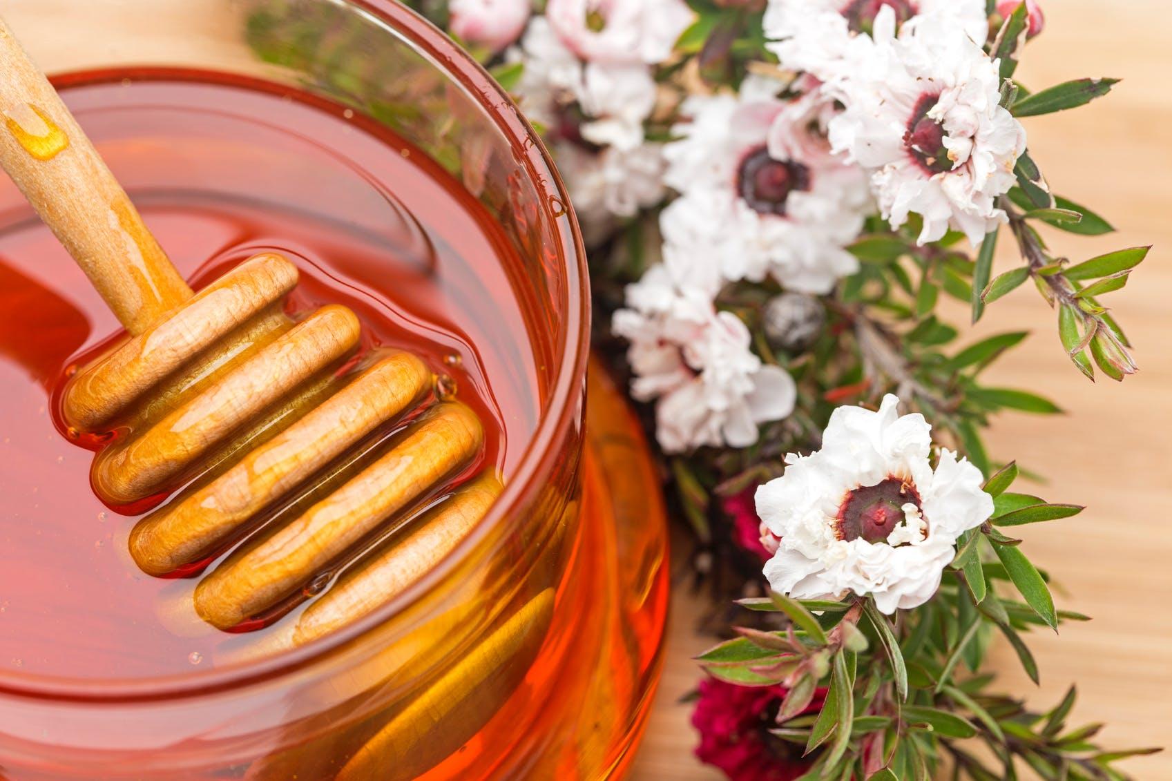 Les bienfaits du miel de manuka | Santé Magazine