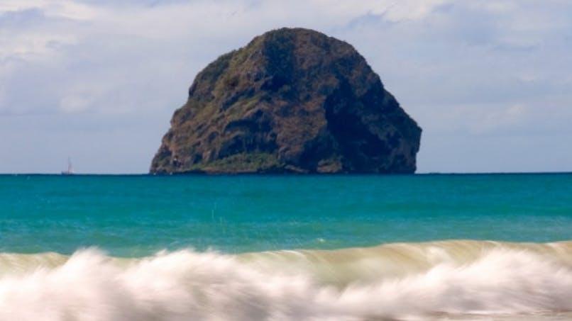 Martinique: deux cas de chikungunya