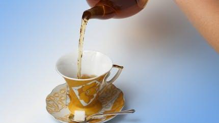 Contre le diabète et l'obésité, buvez du thé vert