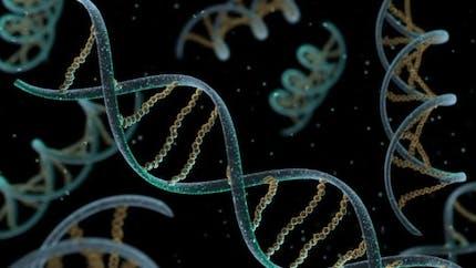Cancer du sein et chimio, les tests prédictifs ont un niveau de preuves insuffisant