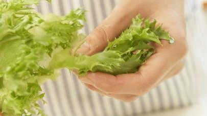 Toshiba va cultiver des salades high-tech