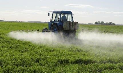 Pesticides: les vrais risques pour la santé