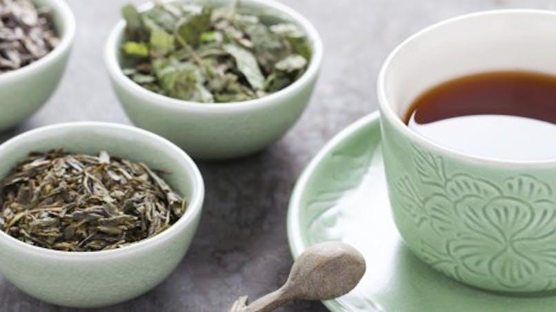 Tiny Tea: le thé minceur qui fait fureur