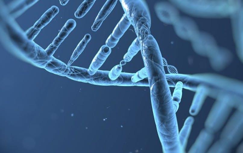 Comment la police fait-elle parler un ADN?