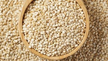 Quinoa: 3 bonnes raisons d'en manger!