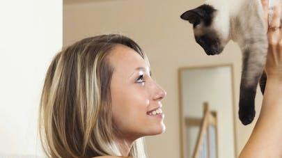 Pourquoi les chats sont votre meilleur allié santé